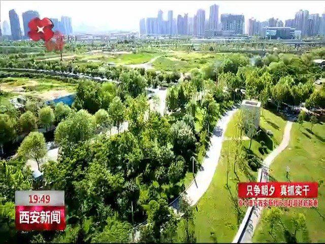 只争朝夕看西安 | 浐灞生态区:推动绿色发展 打造生态治理西安样