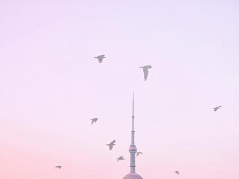 上海外滩游玩价格太亲民,2块钱坐轮船游黄浦江,看东方明珠夜景