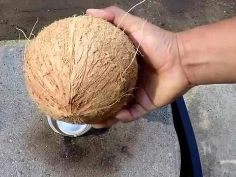 小伙将沸腾的铁水倒入椰子中,最后倒出的玩意让人傻眼!