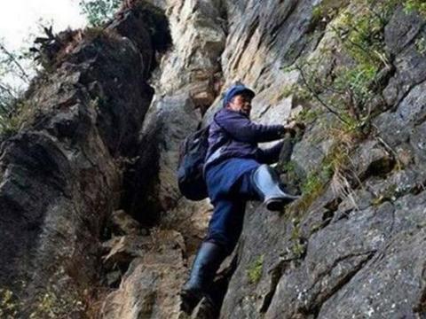大山里的农村大爷攀爬悬崖找野味,近万元一斤,挖宝人都没有吃过