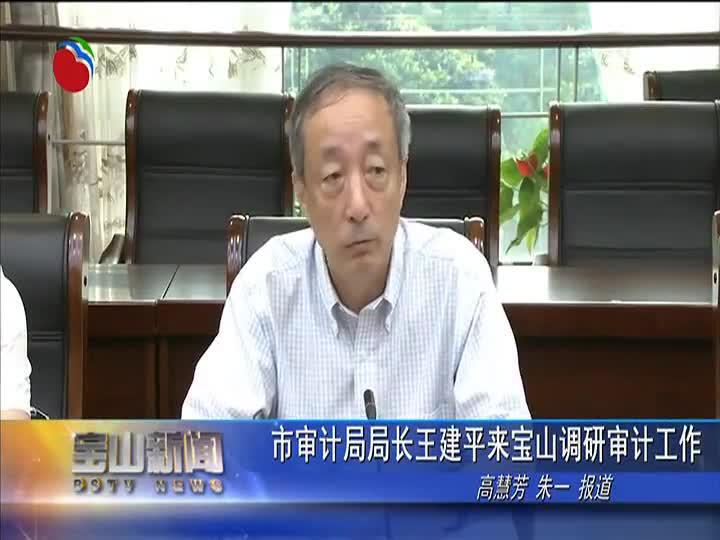 市审计局局长王建平来宝山调研审计工作