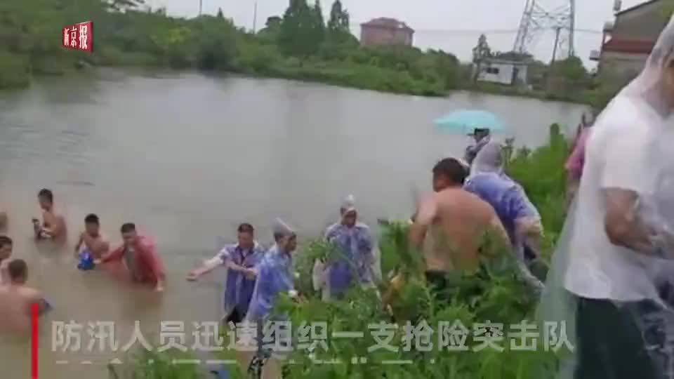 池塘现泡泉险情 20余人冒雨赤膊下水抢险画面动人