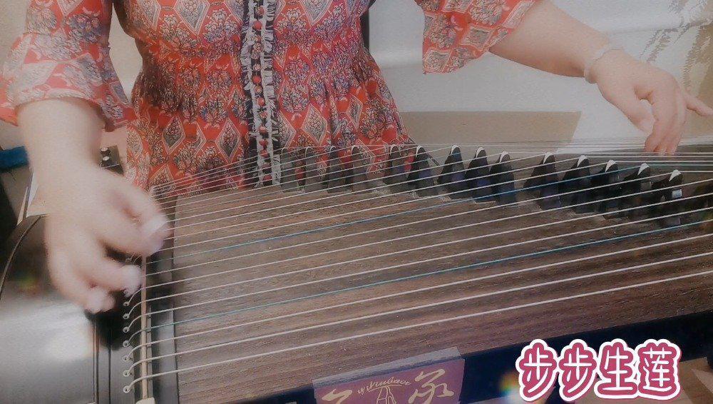 筝友投稿 | 古筝演绎《步步生莲》:缓缓的筝音,温柔动听……