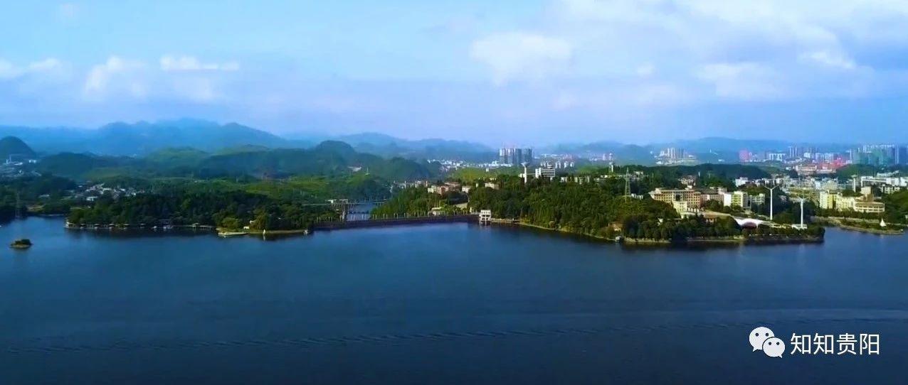 价值2亿 !深圳古生物博物馆馆长张和教授向清镇市捐赠5600余件树化石和古生物化石