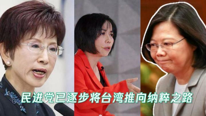 洪秀柱、黄智贤对谈,怒斥民进党:正迈向纳粹之路