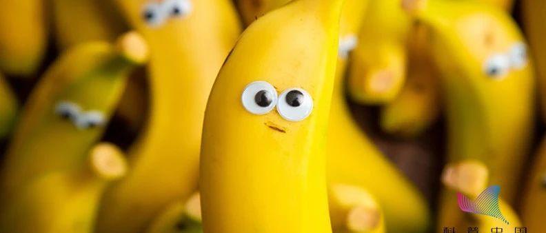 """因为""""长斑""""被误解?香蕉:我很丑但是我很健康"""
