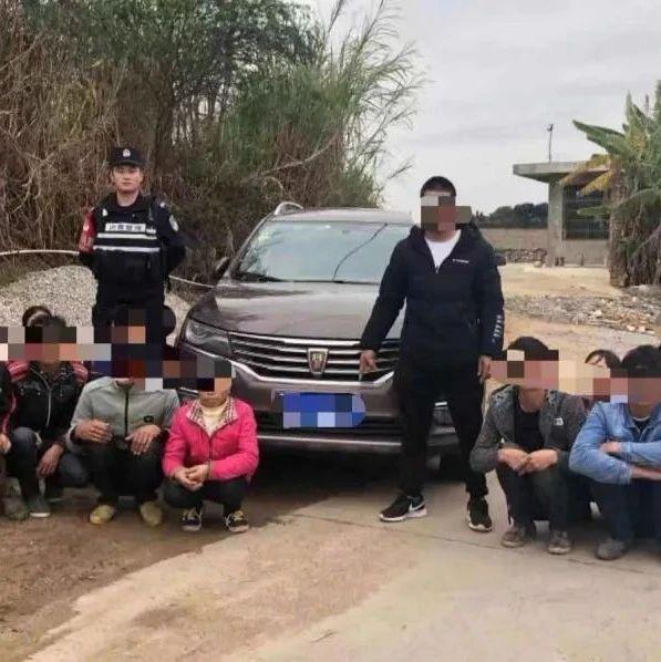边界不可越!广西公布非法入境违法犯罪十个典型案例