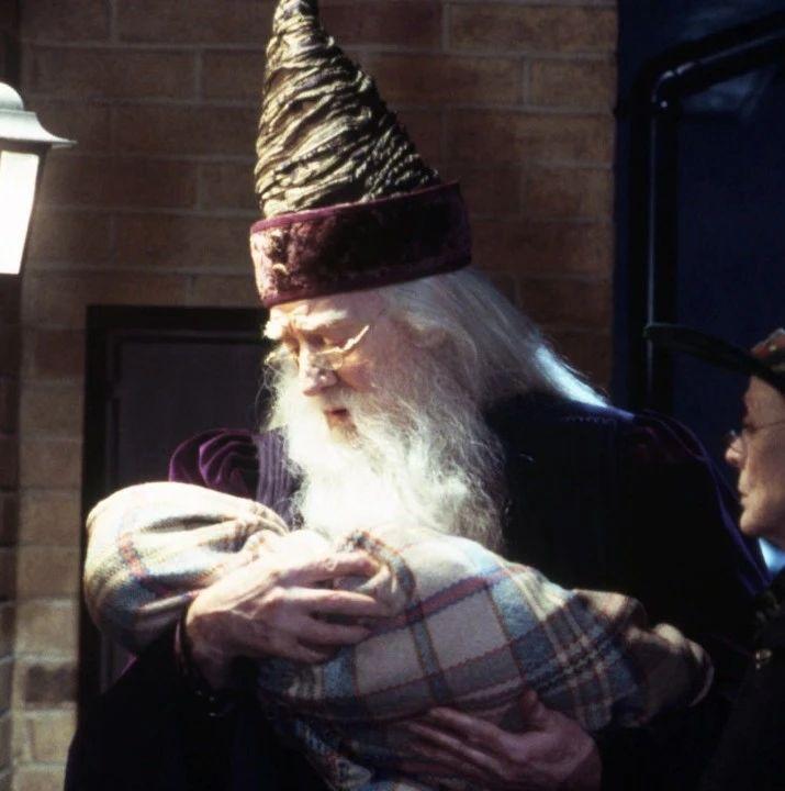 邓布利多是不是哈利「父亲」的替代角色?   Diu