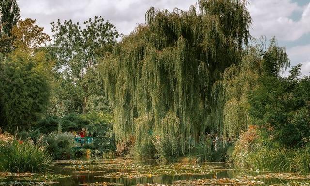 一起云旅游:莫奈花园,法国著名画家莫奈最后的浮光掠影!