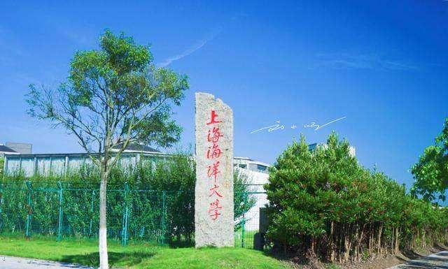 """这所上海的""""双一流""""高校,二本招生,分数低,报考的学生赚大了"""