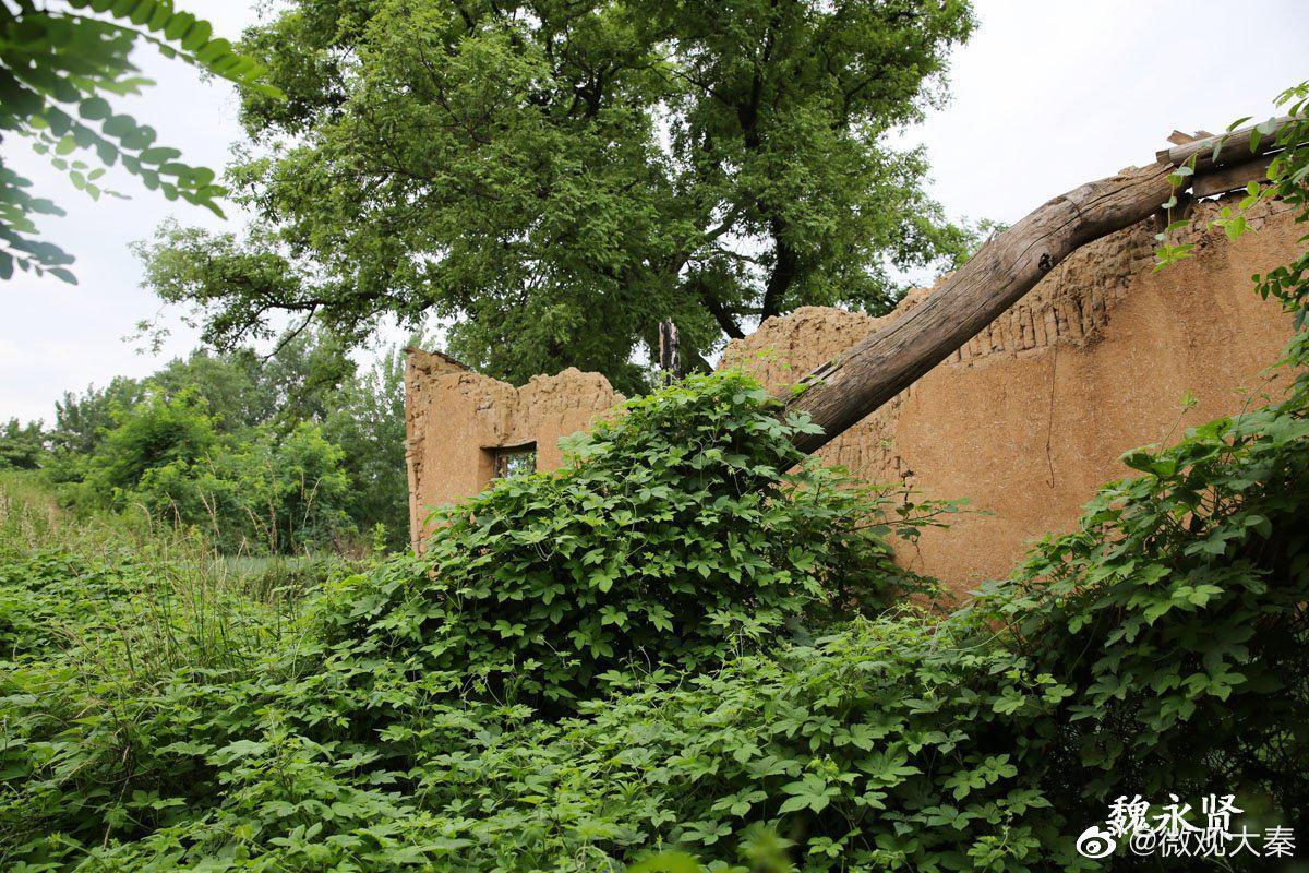西安少陵原上有座明代四合院,古宅已废弃,垂花门砖雕精美无比