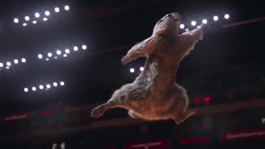 土拨鼠奥运会开幕了……哈哈哈里面梗太多了
