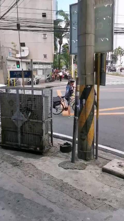 中国女子菲律宾殴打交通执法人员将被驱逐出境