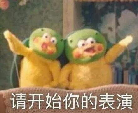 「古树的故事·广汉篇」跨越千年的相守,陪伴是最长情的告白