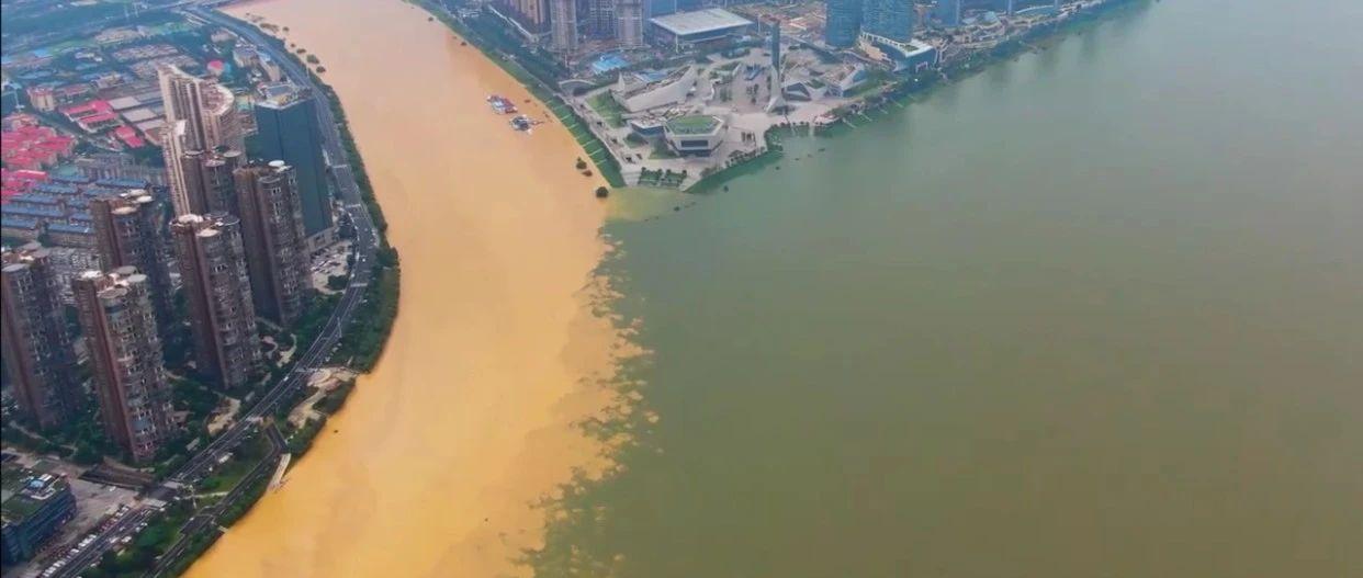 浏阳最新水位来了!浏阳河与湘江交汇处,现独特景观,快看航拍!