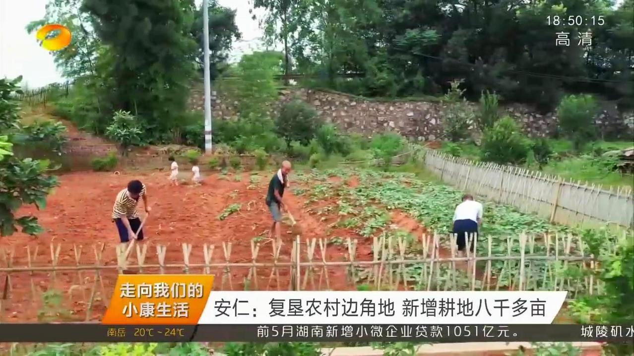 """安仁县鼓励农户复垦""""边角地"""",新增耕地八千多亩"""