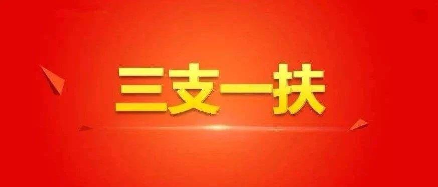 """【头条】宁夏2020年""""三支一扶""""招募3000人!7月20日开始报名"""