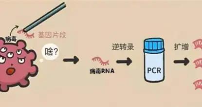 @鹤壁人,关于核酸检测这些事
