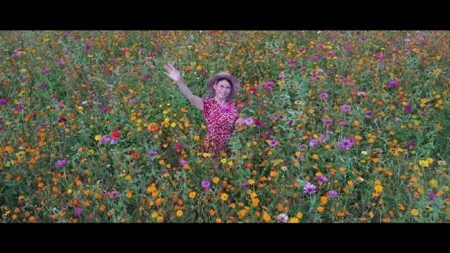 绿城(南宁)龟山滨江公园各种花卉盛开……