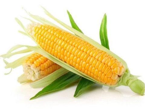 对身体很好的4种蔬菜,排毒燃脂、水嫩肌肤,女人万万别错过!