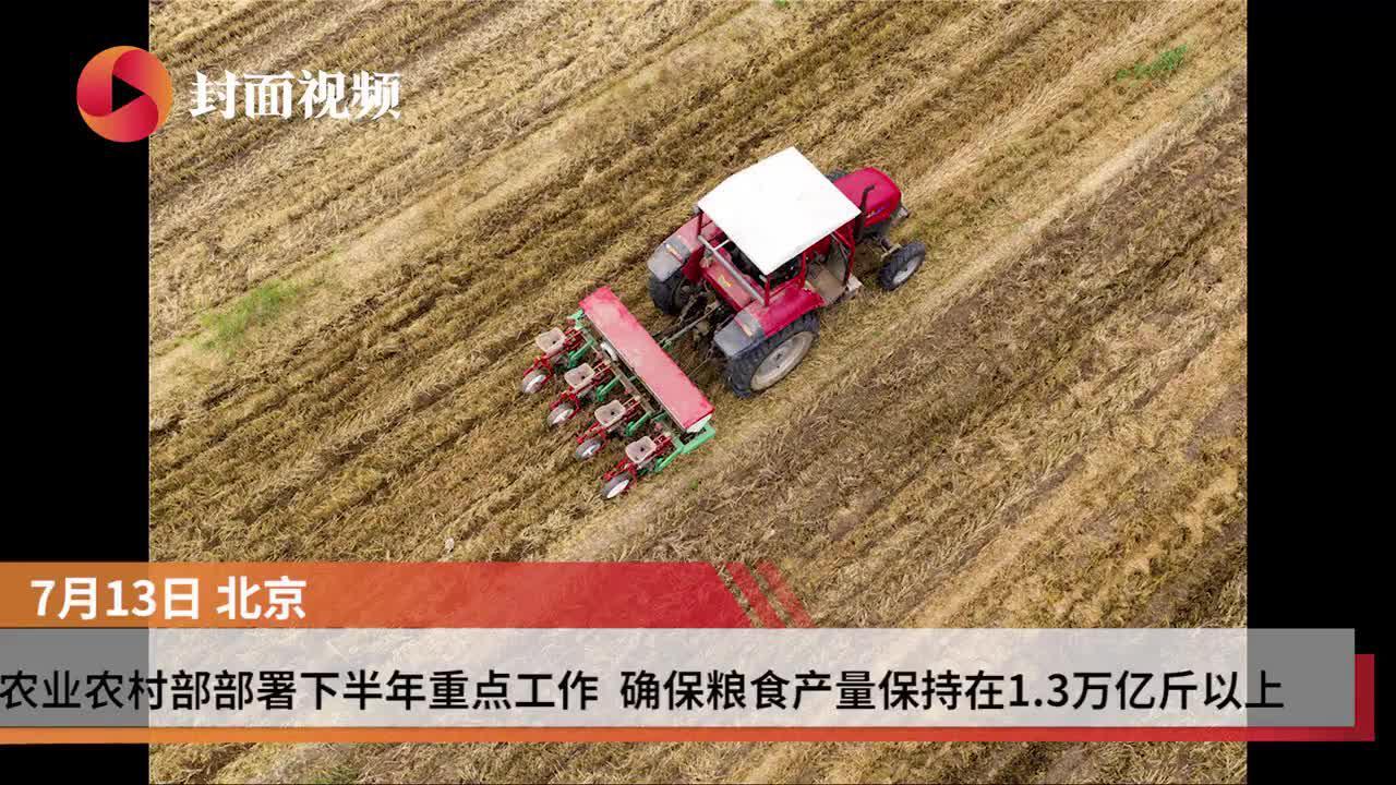 农业农村部部署下半年重点工作 确保粮食产量保持1.3万亿斤以上