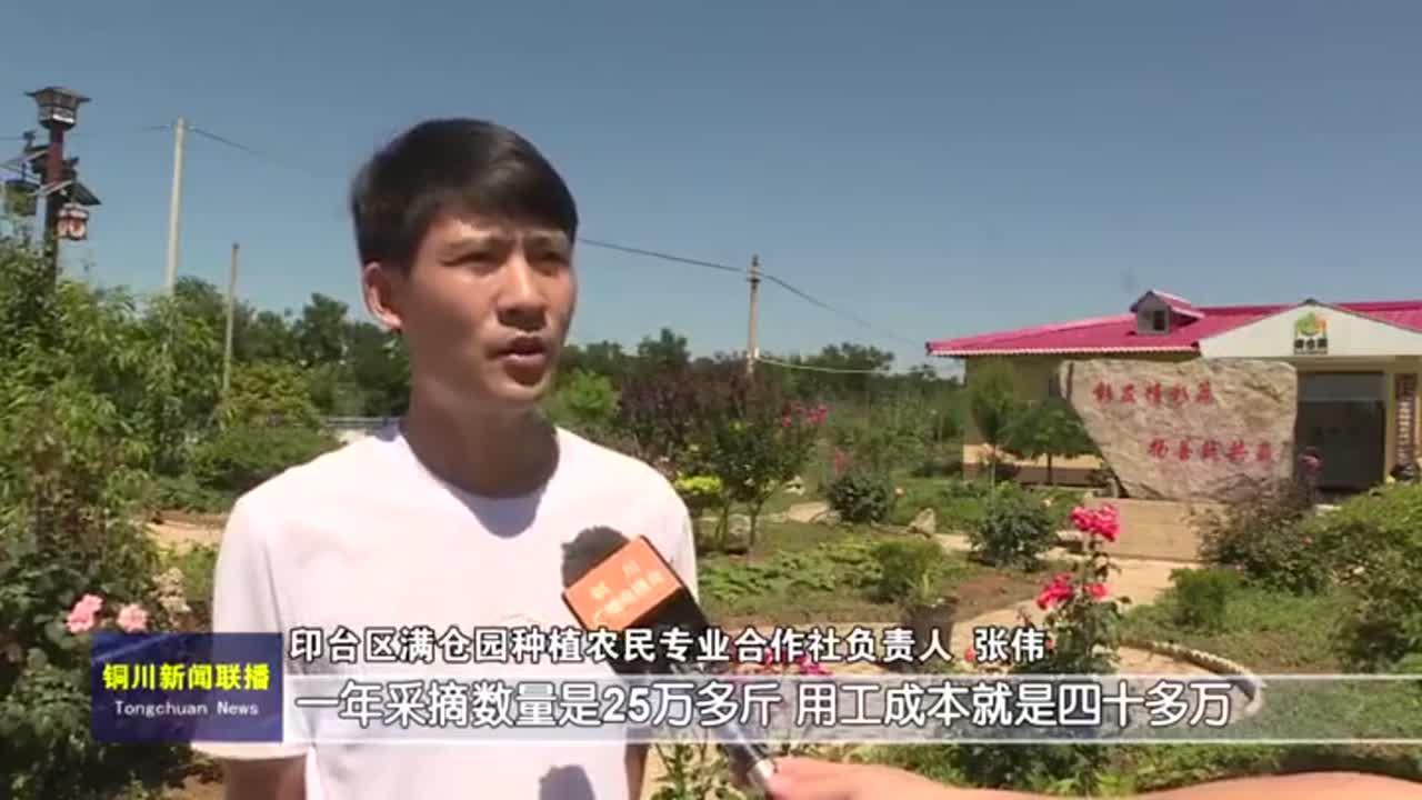 视频 |《铜川新闻联播》2020年7月12日
