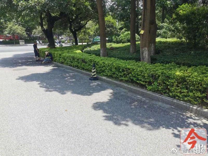 当街持刀捅人!柳州 文昌路旁一女子被捅伤,嫌疑人当场被擒