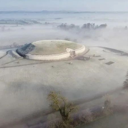 「贵圈真乱」:新石器时代爱尔兰的精英乱伦