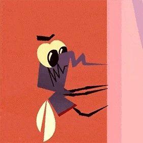夏季如何防蚊灭蚊?这5个问题你必须知道!