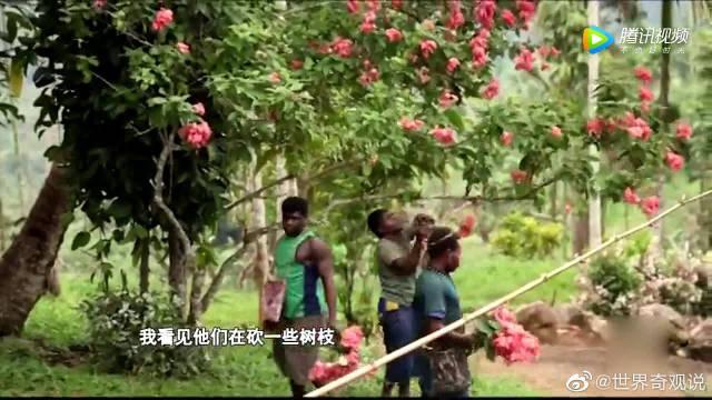 中国小伙参加亚马逊原始部落人的婚礼……