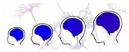 """娃5岁前""""逼""""成的这3个习惯,孩子大脑发育更好,记忆力更发达"""