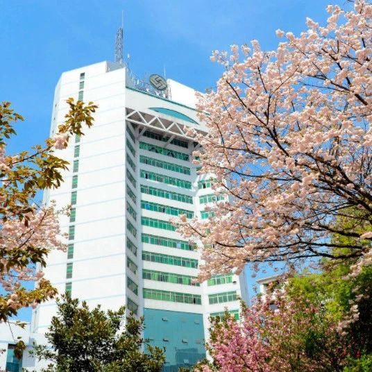 2020年招办主任来帮忙丨重庆邮电大学招生就业处处长韦柳琴访谈