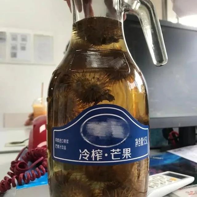"""【注意】亲戚送来的酒""""有毒""""?杭州男子刚喝了一杯就瞳孔放大、精神恍惚"""