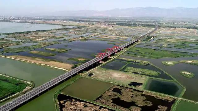 你知道宁夏有多少个湿地吗?这些美炸天的地方你去过吗?