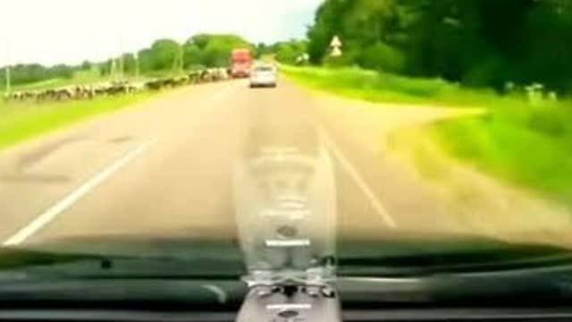 女司机被迫急刹车,却惨遭后车撞扁 越野车打转向灯变道……