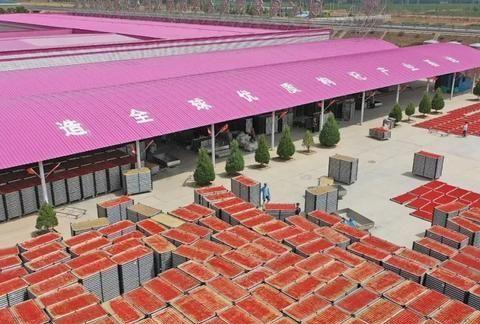 """让葡萄酒枸杞更""""红""""——吴忠市农业高质量发展系列报道之二"""