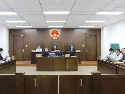 """""""德力西联合""""蹭名误导公众,德力西集团诉原工商总局案一审胜诉"""