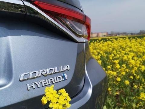 A级车中它威望更高,配置齐全科技感足,百公里仅7L左右油耗