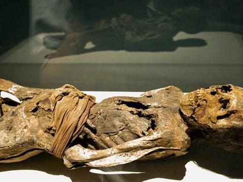 木乃伊居然怀孕是真的吗 千年古尸重生的秘密究竟在哪里