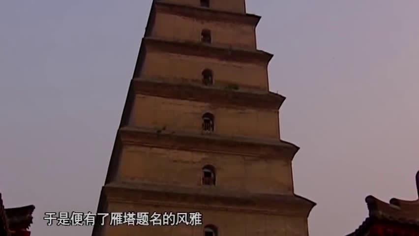 纪录片-《望长安》——雁塔题名