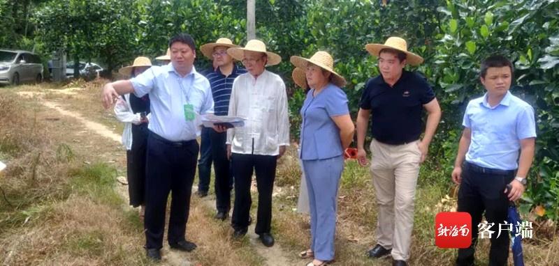 海南农垦南平产业园与福建光泉光电科技有限公司推进项目合作