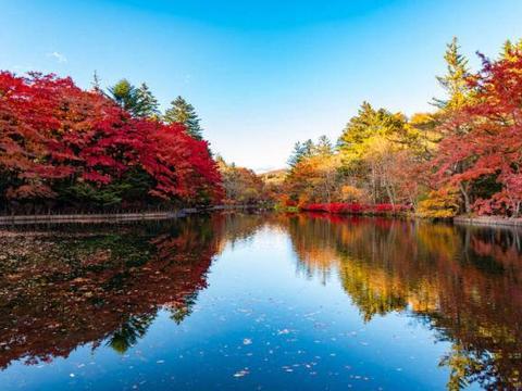 秋天就是要到轻井泽赏枫!轻井泽枫叶景点&推荐商家设施