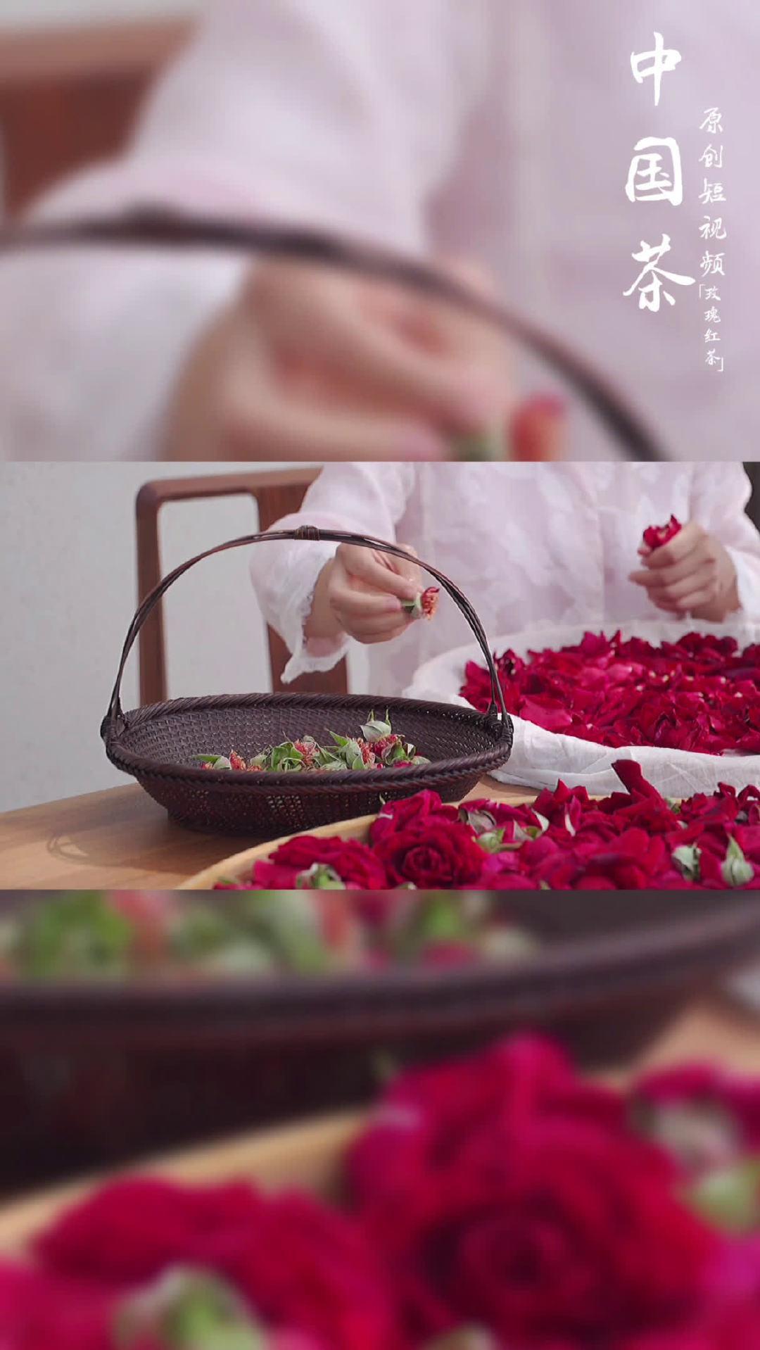 当三月的鲜芽制成红茶 遇见五月的玫瑰 茶人的探索 技艺文明的触