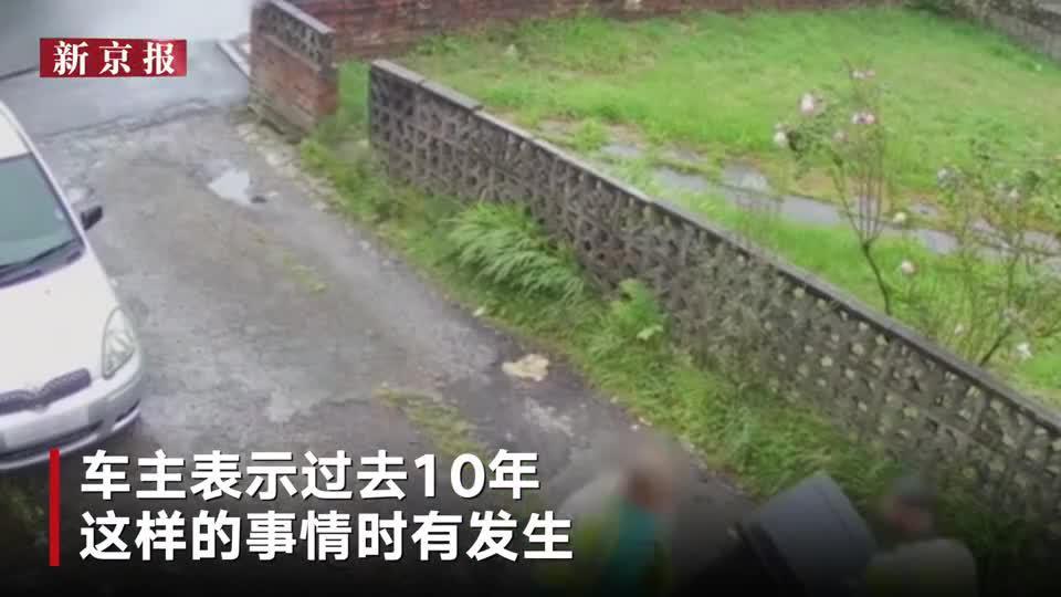 国际丨私家车被十几个垃圾桶包围 车主怒曝监控讨公道