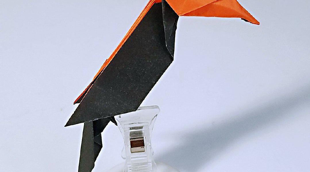 折纸双角犀鸟