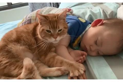 """趁宝宝睡觉,猫咪竟然趁机""""咸猪手""""偷摸,不仅摸手还摸背"""