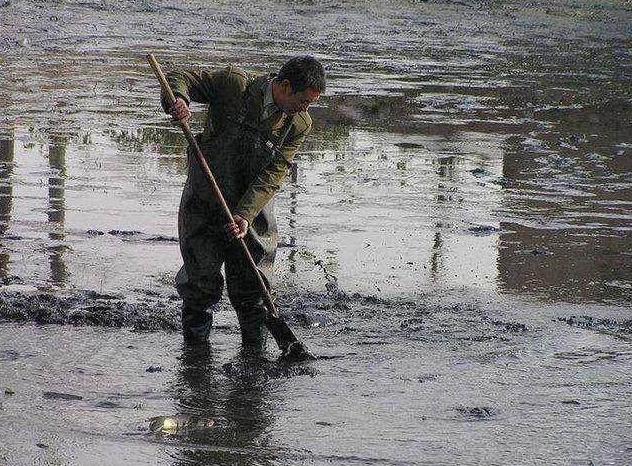 """老汉清理鱼塘时发现一堆""""石头"""",带回家后撬开,里面居然藏宝贝"""
