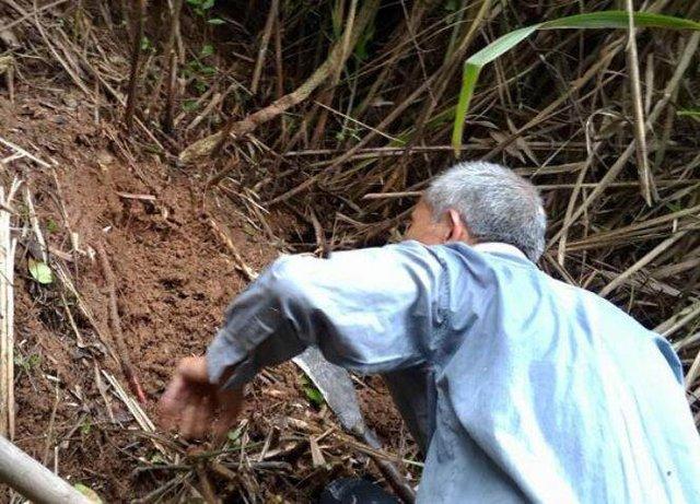 农村大爷冒着生命危险上山挖宝贝,300元一斤,村民却说他不道德