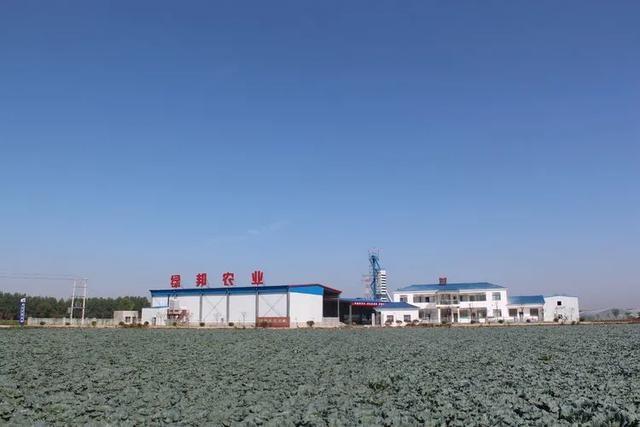 钟祥:一馆三园·大柴湖