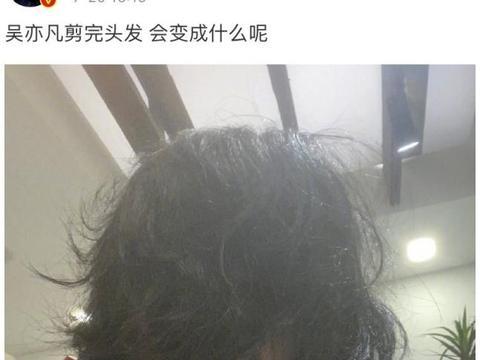 吴亦凡剪完头发 一地碎发成心形 网友沸腾了 难不成是在暗示什么